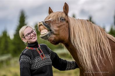 Blide turledere og hester i Venabustallen