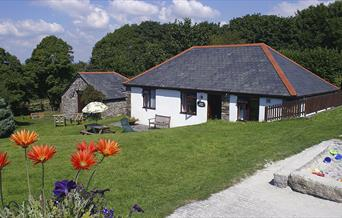Wringworthy - Mowhay Cottage