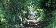 Hendersick House - path to coast