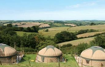 Three yurts at Looe Yurts