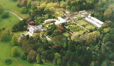 Tregrehan Garden - Bird's-eye View