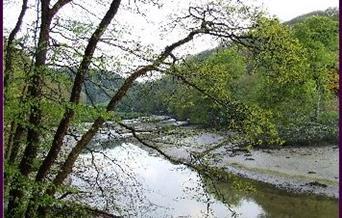 Walk: Pelynt & the West Looe Valley