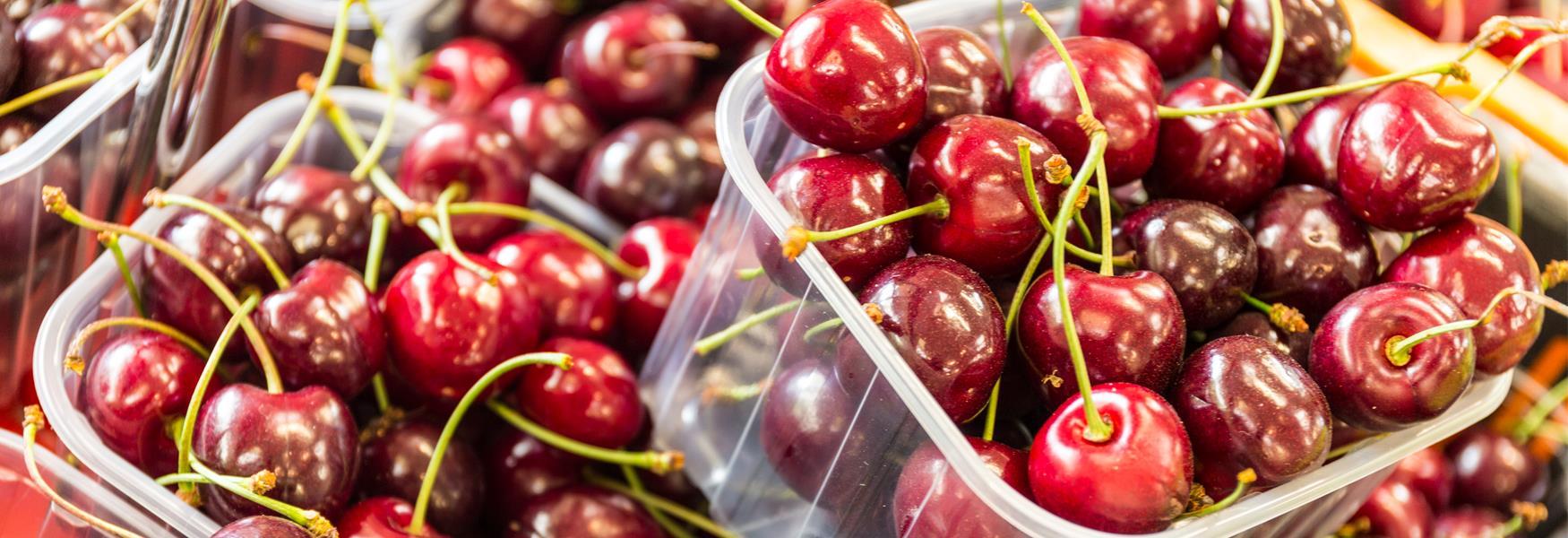 Cherries at the Farm Gate