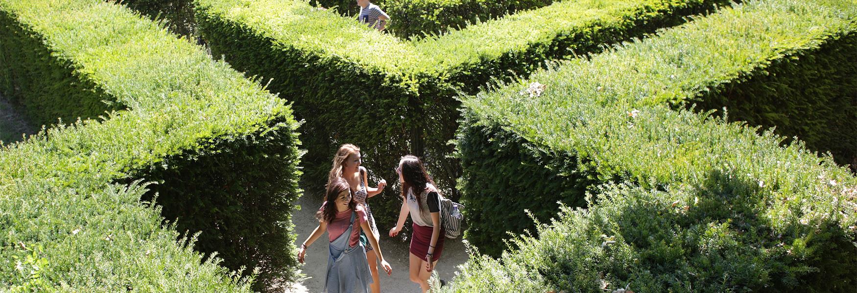 Get lost in Leeds Castle's Maze