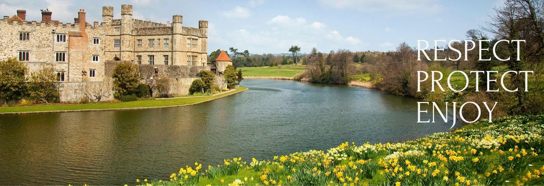 Daffodils at around the moat at Leeds Castle, Kent.