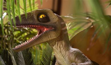 Dinosaur replica at maidstone Museum