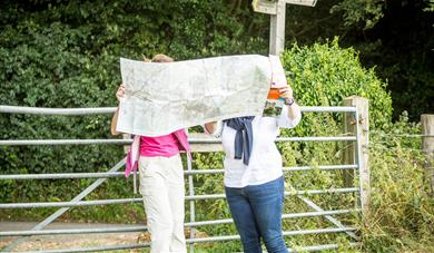 Kent North Downs walkers looking at a map