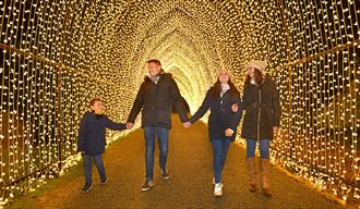 Family in a tunnel of fairy lights