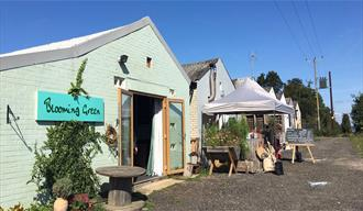 Blooming Green workshop and shop