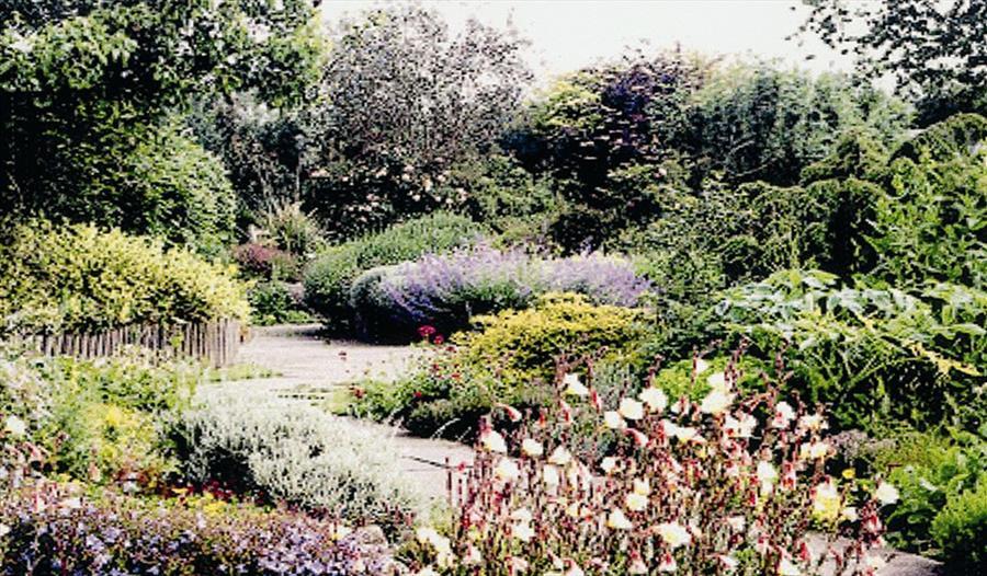 Idencroft Herbs