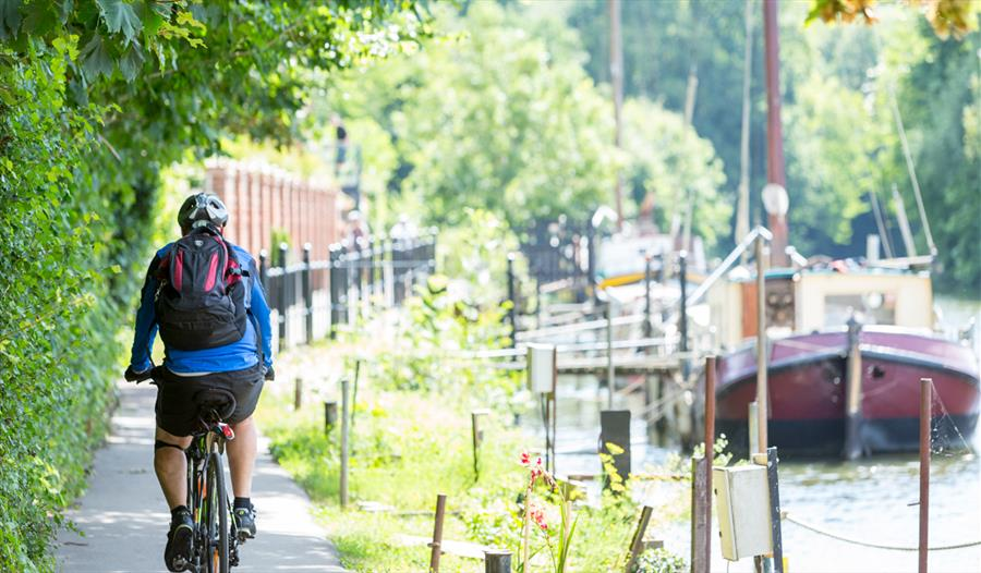 Cyclist on the Towpath