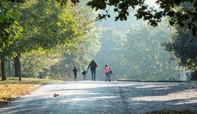 Autumn walk in Mote Park