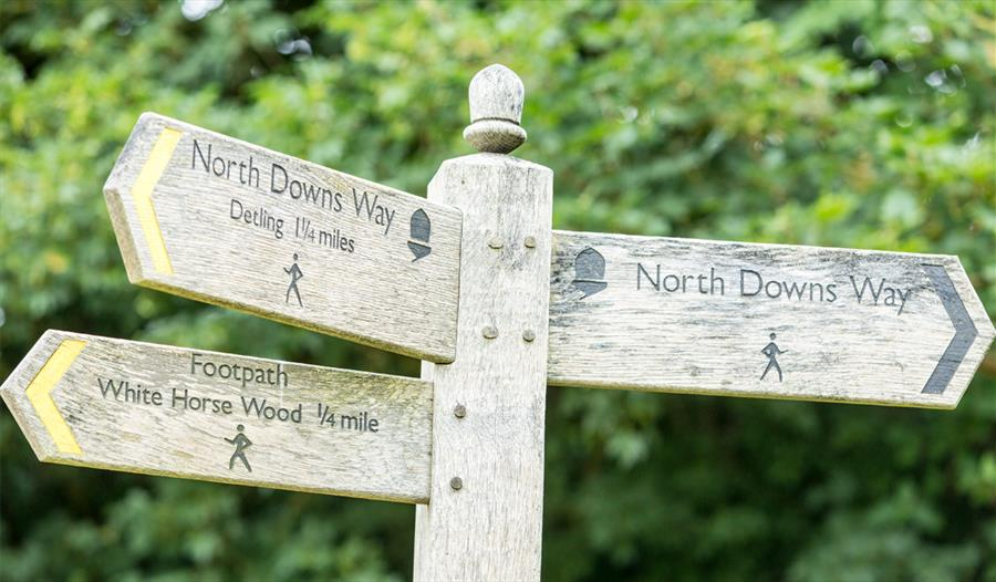 Signpost on the trail