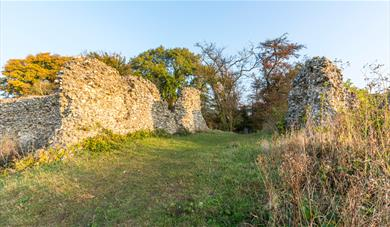Remains of Thurnham Castle