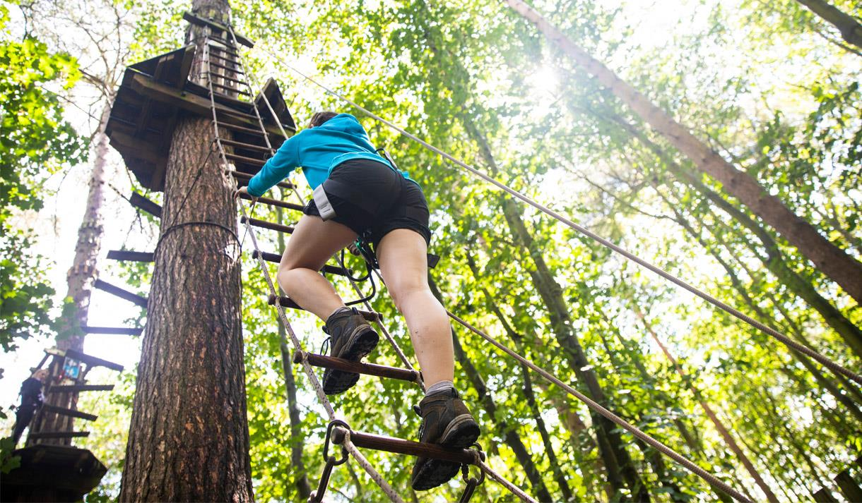 Go Ape - Forest Adventure Leeds Castle