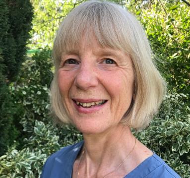 Prof Ann Webb