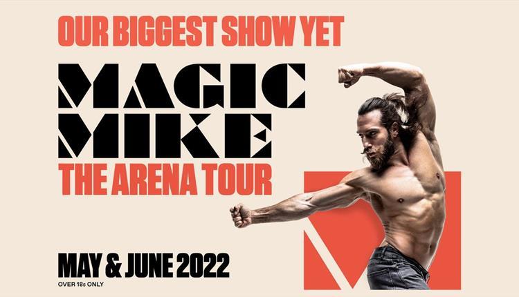 Magic Mike: The Arena Tour