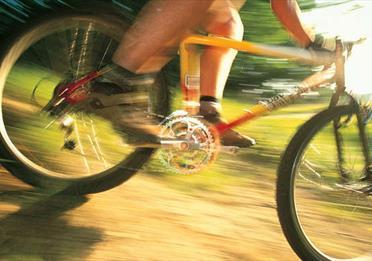 Philips Park Mountain Bike trail
