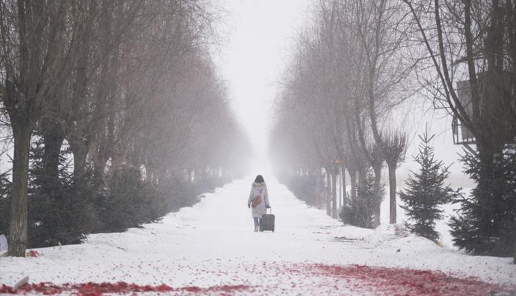 Red berries on a snow, woman in the background
