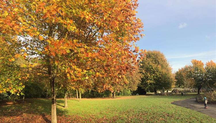 Walton Park