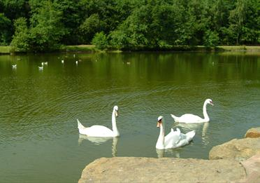 Three Sisters Recreation Area
