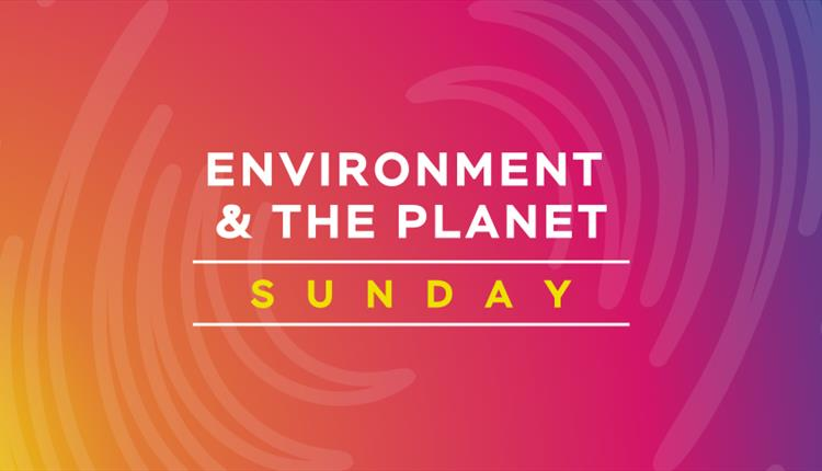 Pink poster: Environment and the planet