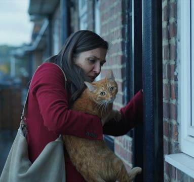 Woman with a ginger cat