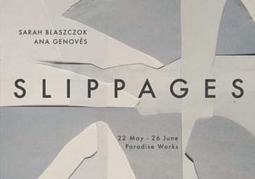 White and grey poster: slippages