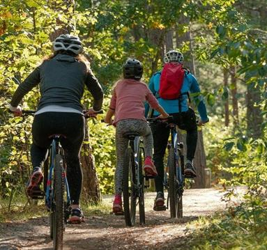 Family on a cycle trail