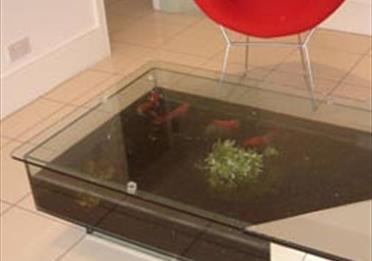 Aqua Tech Tank