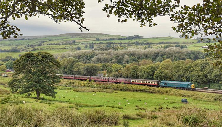 Diesel train, country landscape