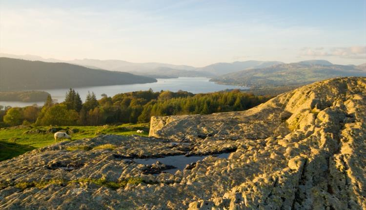 Lake District - Cruise, Poetry and Grasmere Gingerbread Day Trip from Manchester