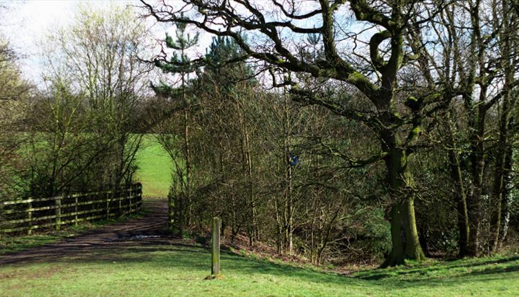 Bruntwood Park