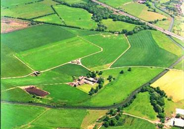 Aerial view of Chat Moss