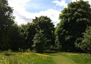 Chorlton Park