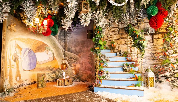 Peter Rabbit Christmas Grotto