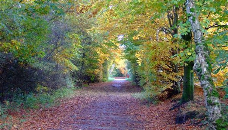 Kirklees Trail in Bury