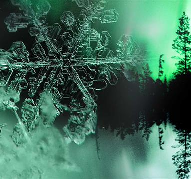 Snowflake, close up