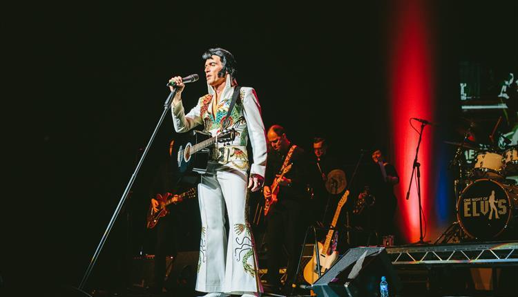 Lee Memphis King dressed up as Elvis
