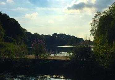 Etherow Country Park and Local Nature Reserve