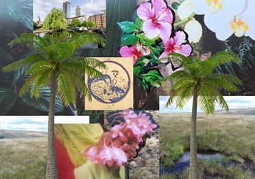 Jarda جاردا installation, collage of green images