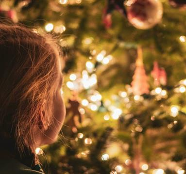 Young child looking at large indoor Christmas tree