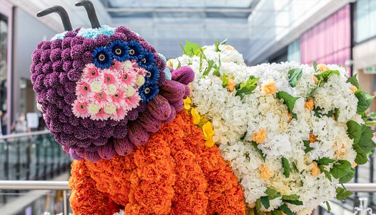 Manchester Bee Floral Display and Live Performances at Manchester Arndale
