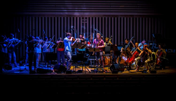 Manchester Camerata members in a concert hall
