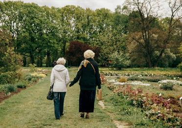 Women Walking on Green Grass Field