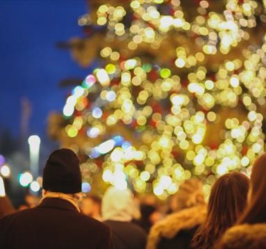 people enjoying Christmas tree with lights on street