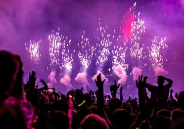 People dancing and Purple Fireworks Effect
