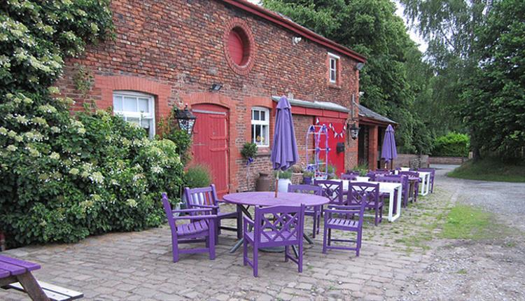 The Lavender Barn
