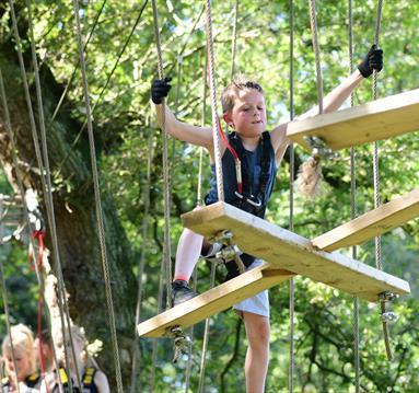 Trafford Treetop Adventures