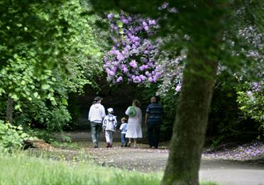 A family walking in Springfield Park.